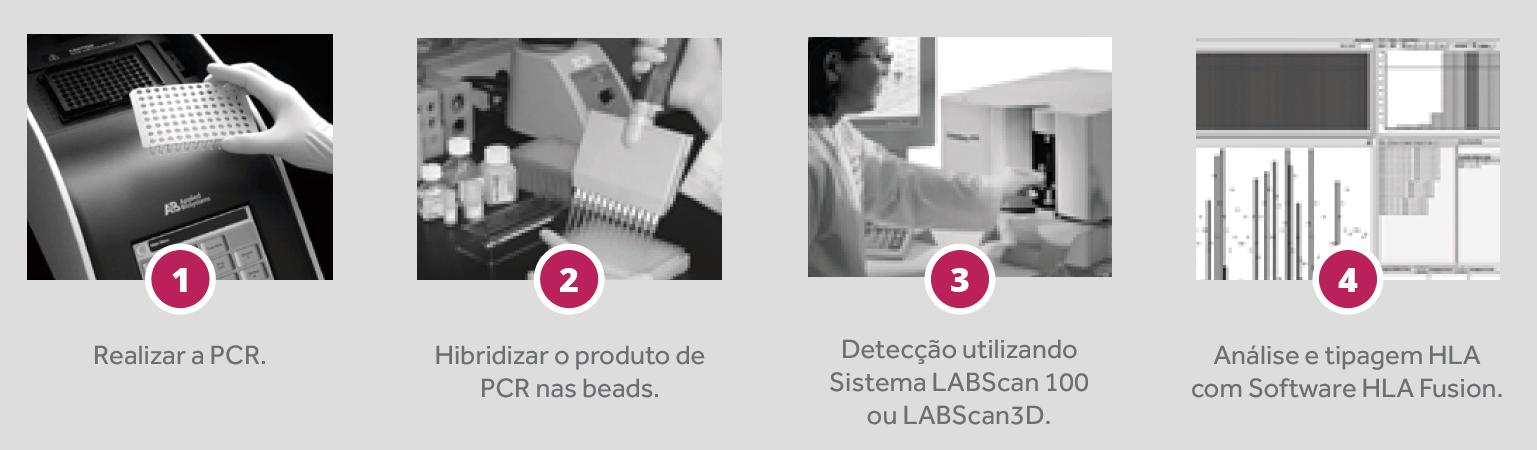 Labtype SSO