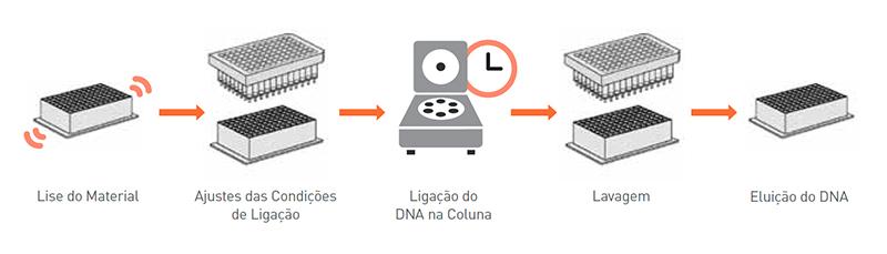 Extração de DNA em automação linha Cent