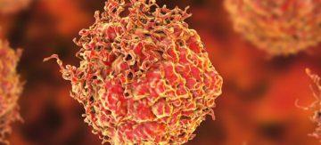 Cientistas podem ter encontrado uma maneira de tratar o câncer sem quimioterapia replicando o sistema de autodestruição do nosso corpo
