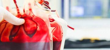 Sangue tipo A é convertido em sangue de doador universal com a ajuda de enzimas bacterianas