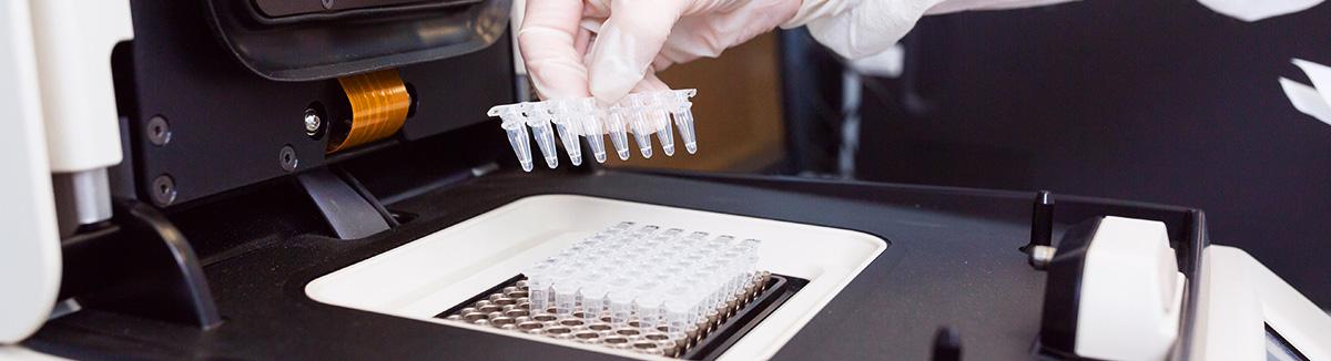 Genômica-DNA