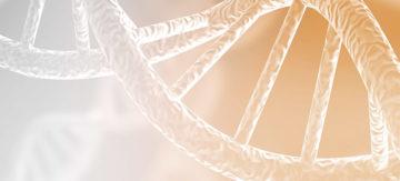Curso On-line: Tipificação HLA através do Sequenciamento de Nova Geração AllType™ e AllType™ FASTplex™ NGS